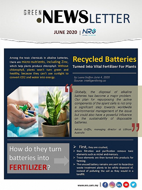 GREEN-JUNE-20-Newsletter