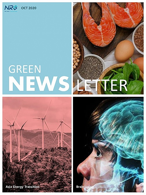 GREEN-OCT-20-Newsletter-jpg